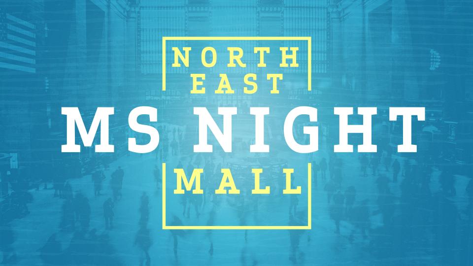 Middle School Mall Night