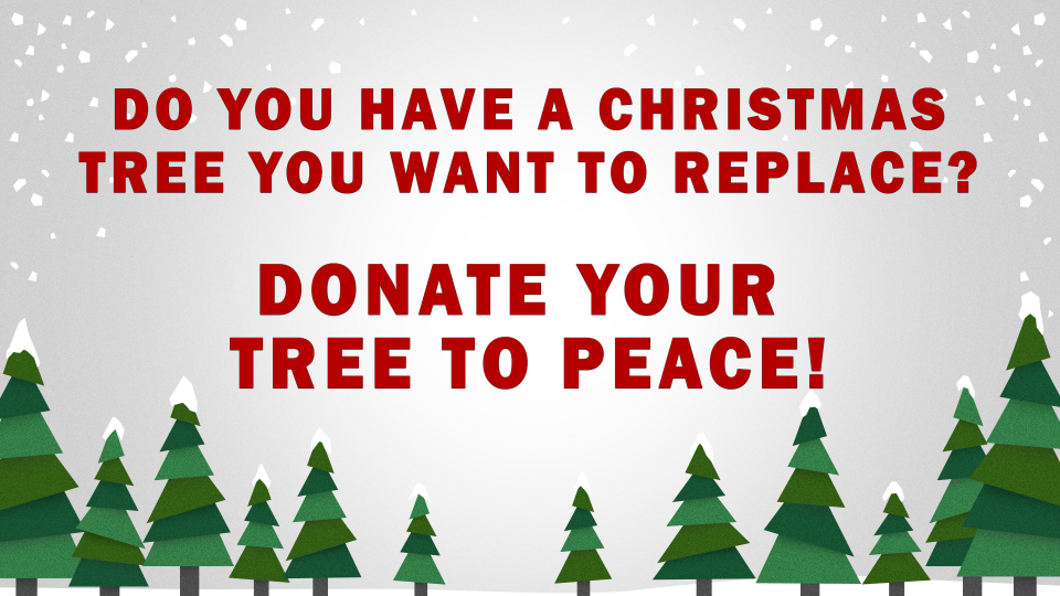 Christmas Tree Donations